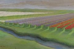 tulpenfelder, 20x50 acryl auf holz
